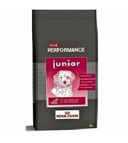 Performance Junior