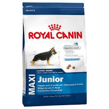 royal Maxi Junior